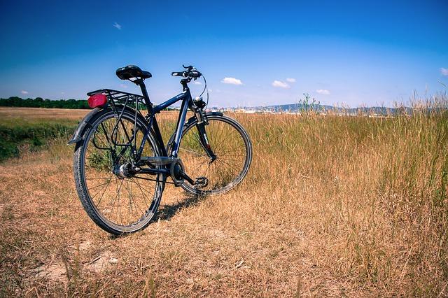 rower do 2000